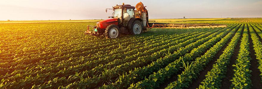 business plan de l'exploitation agricole